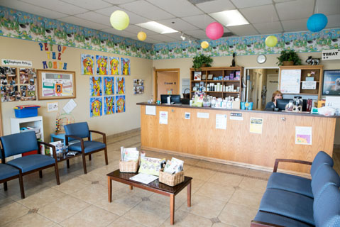 iM CenterVeterinaryClinic May16 5